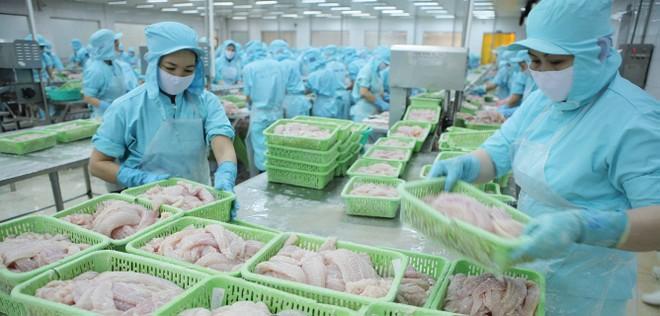 Doanh nghiệp thuỷ sản tìm đường bù đắp thị trường Trung Quốc