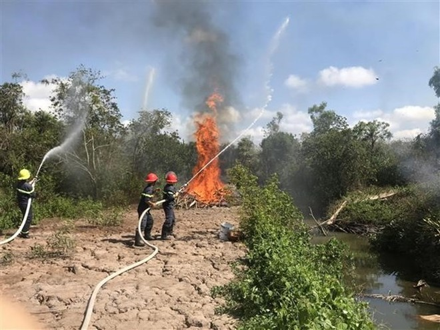 Diễn tập chữa cháy rừng. (Ảnh minh họa: Nhật Bình/TTXVN).