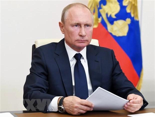 Tổng thống Nga Vladimir Putin tại một cuộc họp ở Moskva ngày 12/5/2020. (Nguồn: AFP/TTXVN).