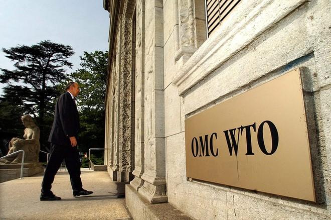 8 ứng viên chạy đua vào ghế Tổng giám đốc WTO