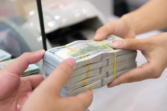 Với xấp xỉ 81 tỷ USD dự trữ ngoại hối, cơ quan điều hành có đủ công cụ và sự linh hoạt để ổn định thị trường tiền tệ.