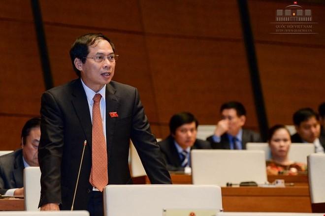 Ông Bùi Thanh Sơn phát biểu tại Quốc hội.