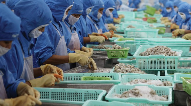 Nhu cầu về thực phẩm chế biến sẵn và đóng gói được dự báo sẽ tiếp tục tăng.