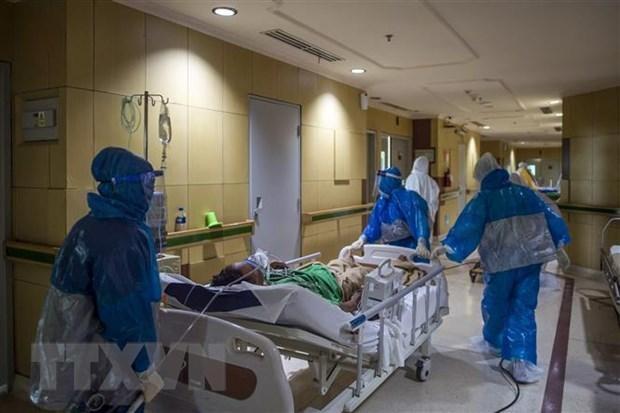 Nhân viên y tế chuyển bệnh nhân COVID-19 tại bệnh viện ở Surabaya, Đông Java, Indonesia. (Ảnh: AFP/TTXVN).