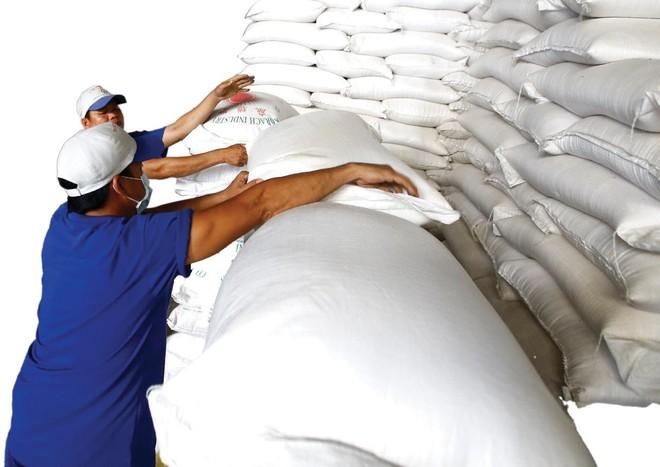 Xuất khẩu gạo Việt Nam năm 2021 dự báo đạt 6 triệu tấn, giảm 4% so với năm 2020. Ảnh: Dũng Minh.
