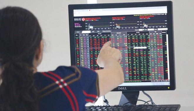 Nhà đầu tư cần có sự sàng lọc cẩn thận trước khi quyết định đầu tư.