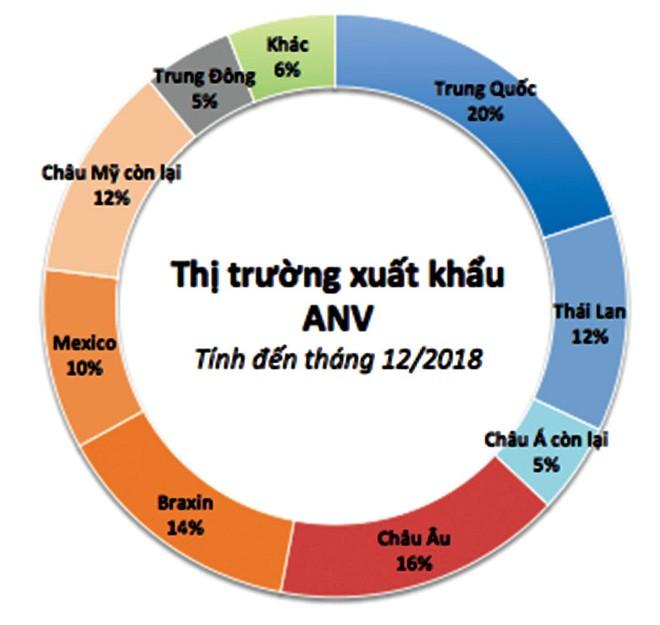 """Nam Việt """"hồi sinh"""" mạnh mẽ, mục tiêu xuất khẩu đa thị trường ảnh 1"""