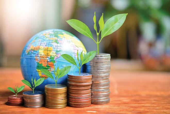 Các ngân hàng Việt cần lượng vốn lớn để đáp ứng các chuẩn mực hoạt động quốc tế
