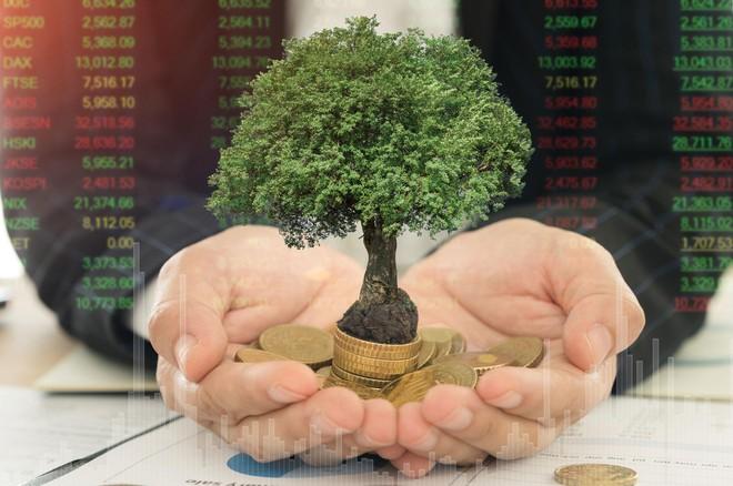 Thị trường chứng khoán vẫn ủng hộ xu hướng đầu tư giá trị