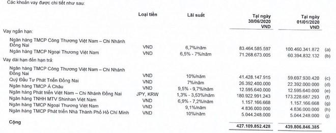 Cấp nước Đồng Nai (DNW) dự kiến huy đồng 300 tỷ đồng từ cổ đông ảnh 1