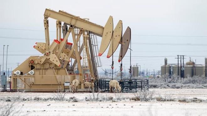 Bão tuyết ở Texas có thể ảnh hưởng đến quyết định của OPEC