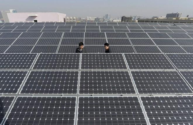 Chi phí tăng cao đe dọa ngành năng lượng điện mặt trời