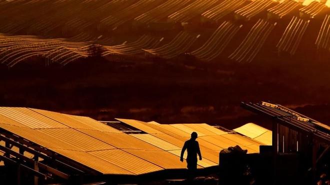 Ngành năng lượng mặt trời lao đao khi chi phí nguyên liệu đầu vào tăng