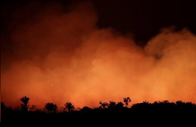 G7 chi 20 triệu euro giúp dập tắt các đám cháy ở Amazon