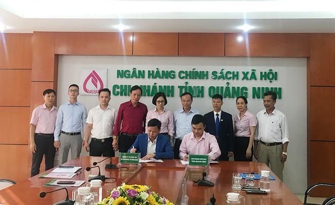 Ngân hàng Chính sách xã hội tỉnh Quảng Ninh ký hợp đồng tín dụng với người sử dụng lao động được vay vốn