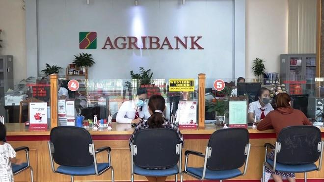 Agribank tiếp sức hộ sản xuất, doanh nghiệp vững tin vượt qua đại dịch ảnh 1