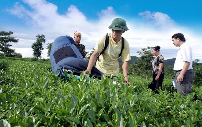Agribank tiếp sức hộ sản xuất, doanh nghiệp vững tin vượt qua đại dịch ảnh 2