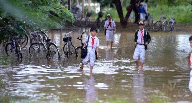 F.I.S Vietnam tặng bảo hiểm cho các tình nguyện viên vùng lũ