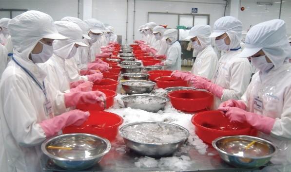 71% dòng thuế với sản phẩm thủy sản Việt Nam nhập khẩu vào EEU sẽ được xóa bỏ ngay khi FTA có hiệu lực