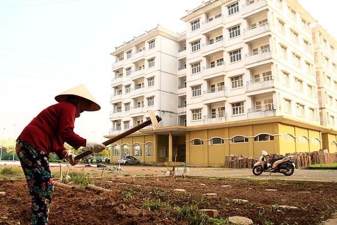 HoREA: Không nên loại trừ đối tượng vay vốn thuê, mua nhà ở xã hội