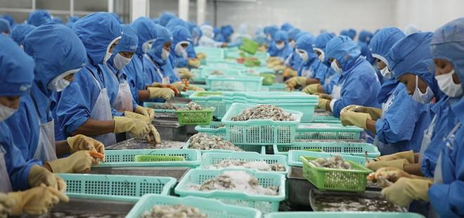 Tôm là sản phẩm chủ lực, đóng góp tới 46% kim ngạch xuất khẩu thủy sản của Việt Nam năm 2017