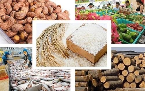 """Vượt qua """"giông bão"""", 2019 xuất khẩu nông sản sẽ đạt kỷ lục với kim ngạch 41,3 tỷ USD ảnh 1"""