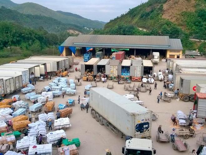 Virus Corona sẽ tác động ra sao tới xuất khẩu nông sản Việt Nam