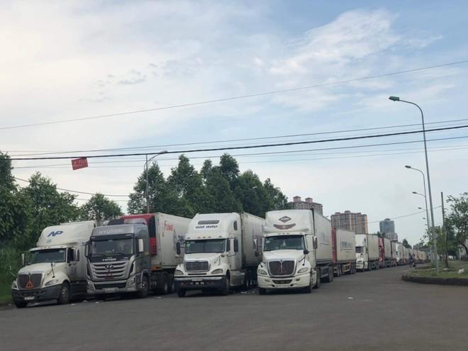 Những ngày qua, lượng xe nông sản của các chủ hàng, doanh nghiệp vẫn kéo lên cửa khẩu, bất chấp khuyến cáo từ cơ quan quản lý