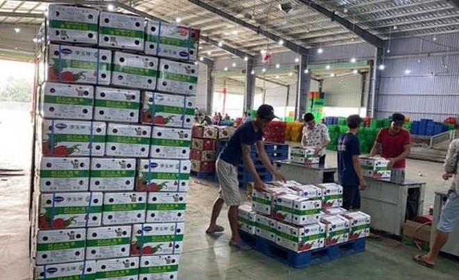 Bộ Công Thương đề nghị các địa phương hạn chế đưa hàng hóa lên biên giới, trừ trường hợp đưa lên để xuất khẩu theo hình thức chính ngạch và đối tác phía Trung Quốc có khả năng nhận hàng.