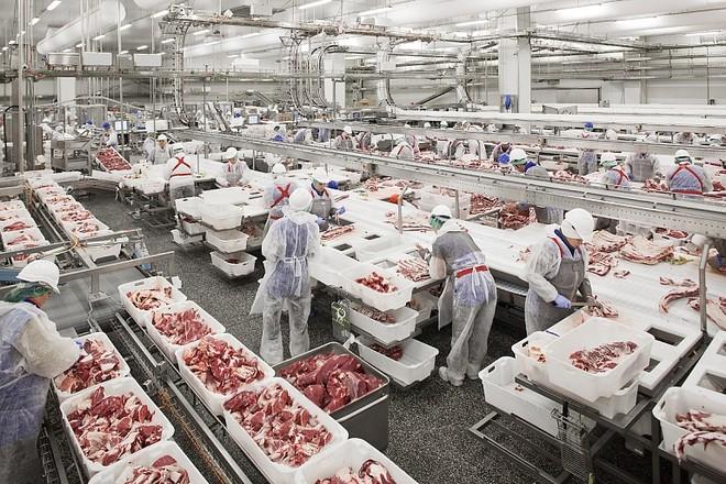 Tạo điều kiện để thịt lợn Nga vào thị trường Việt Nam ảnh 1