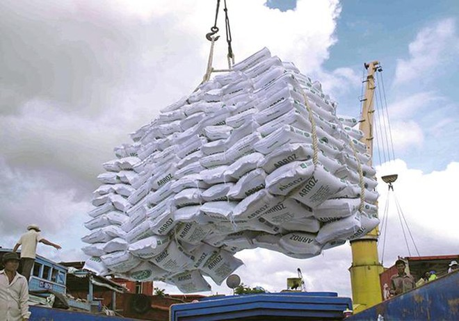 Việc xuất khẩu gạo cần phải xem xét kỹ lưỡng, thận trọng