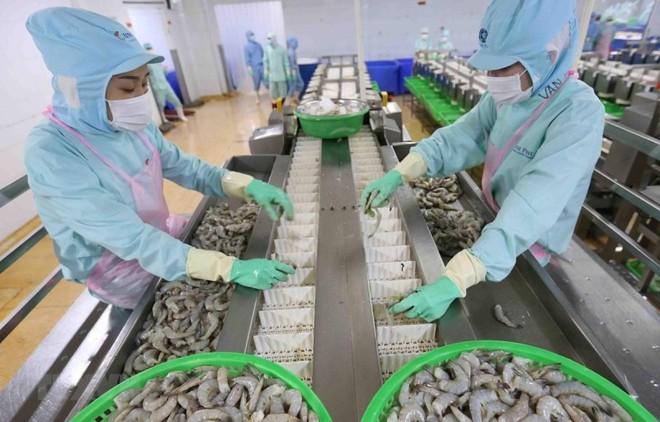 EVFTA được phê chuẩn tại Kỳ họp thứ 9, Quốc hội khóa XIV và có hiệu lực từ tháng 7 sẽ tiếp thêm động lực cho xuất khẩu của Việt Nam.