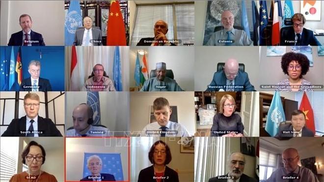 Một phiên họp trực tuyến của Hội đồng Bảo an LHQ, ngày 29/6/2020. Ảnh: Hữu Thanh - PV TTXVN tại New York, Hoa Kỳ