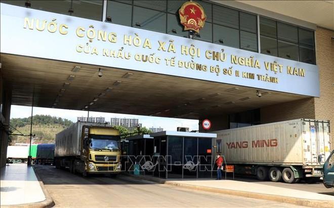 Các xe hàng nông sản chờ làm thủ tục xuất khẩu sang Trung Quốc. Ảnh: Quốc Khánh/TTXVN
