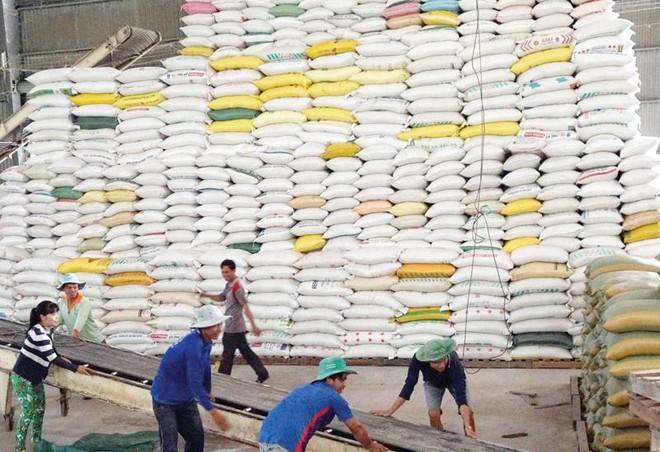 Gạo Việt Nam đang có nhiều cơ hội xuất khẩu sang thị trường EU.