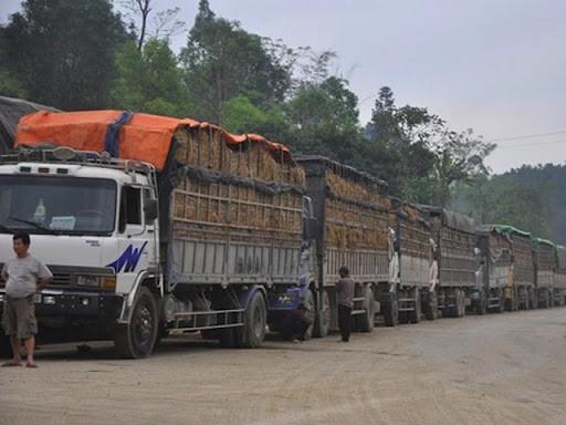 Theo Bộ Công Thương, doanh nghiệp xuất khẩu, các địa phương có vùng trồng nông sản lớn theo dõi sát tình hình thông quan hàng hóa xuất khẩu tại các cửa khẩu biên giới Việt – Trung.