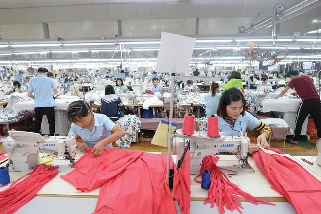 Trong một năm kinh doanh đầy khó khăn, MSH vẫn giữ được việc làm cho người lao động, duy trì được đà tăng trưởng doanh thu