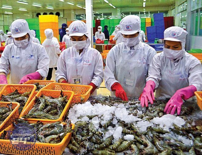 Anh một trong 10 thị trường nhập khẩu thủy sản lớn nhất của Việt Nam, thị phần thủy sản xuất khẩu của ta tại thị trường này năm 2020 đạt hơn 4% (năm 2015 đạt 1,03%).