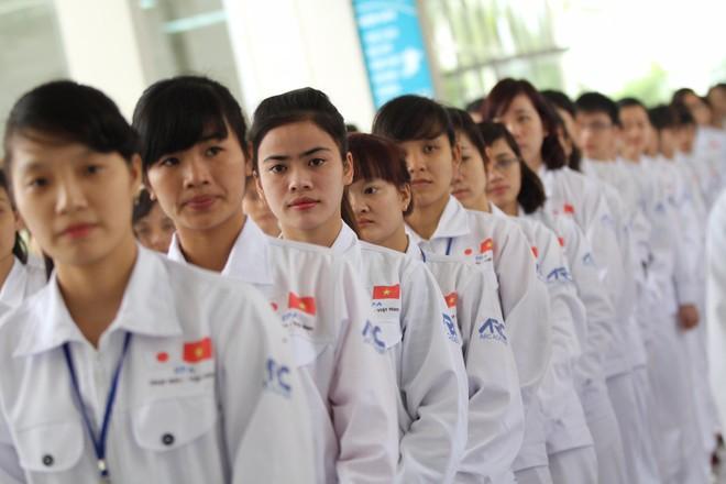 Người lao động phải trả 7.000 - 8.000 USD/người mới được sang Nhật Bản