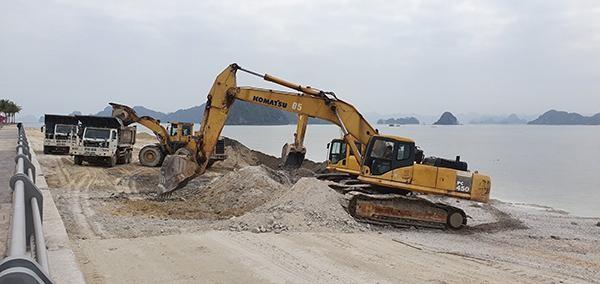 Xem xét kỷ luật cán bộ liên quan đến vụ đổ đất lấn bãi triều tại Vân Đồn ảnh 1