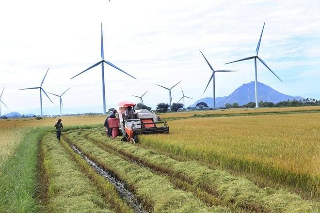Đầu tư tuần qua: Long An xây khu công nghiệp1.355 tỷ đồng; Bình Định khánh thành nhà máy năng lượng sạch 6.200 tỷ đồng ảnh 8