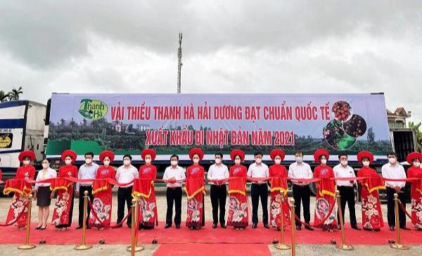 Vải thiều Thanh Hà (Hải Dương) lần đầu xuất khẩu sang Thái Lan ảnh 1