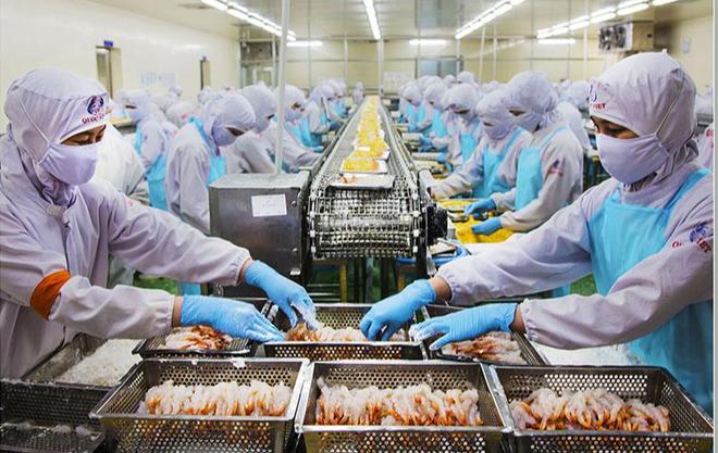 Chế biến thủy sản xuất khẩu Cà Mau vẫn tăng trưởng trong thử thách thiên tai và dịch bệnh