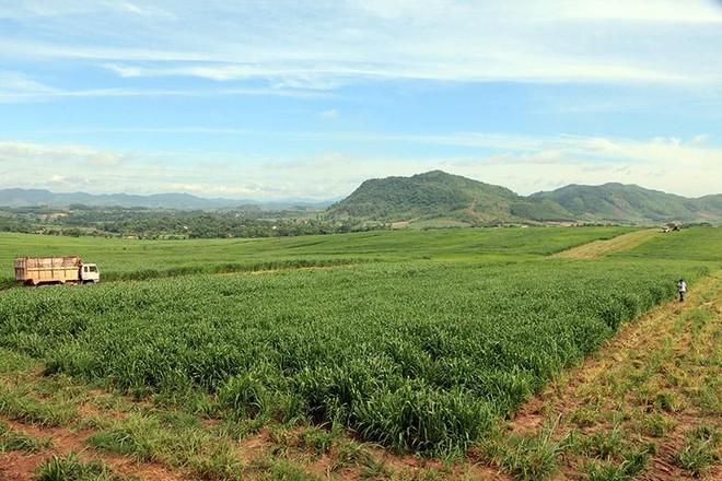 Đề xuất sửa đổi 11 nhóm chính sách về đất đai