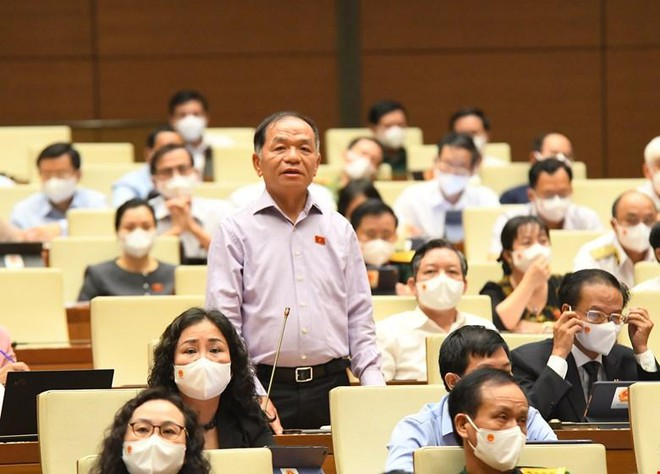 Đại biểu Lê Thanh Vân (Cà Mau) phát biểu. (Ảnh- Quochoi.vn).