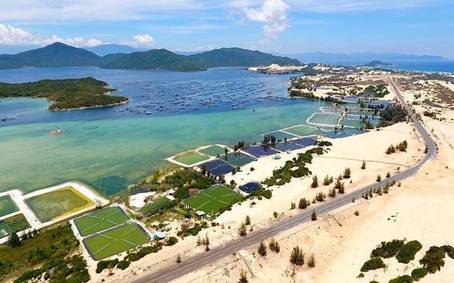 Quy hoạch Vân Phong và Cảng trung chuyển quốc tế: Cần lắng nghe ý kiến các bộ, ngành