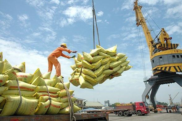 Chuyển hướng xuất khẩu gạo cao cấp, lợi nhuận Trung An (TAR) tăng mạnh trở lại quý III/2021