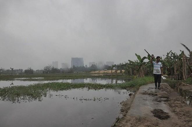 Vụ hủy 185 sổ đỏ tại Quảng Nam: Tranh chấp giao dịch đất đai, người dân