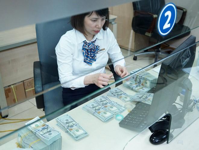 Ngành ngân hàng có đủ công cụ để ổn định tỷ giá