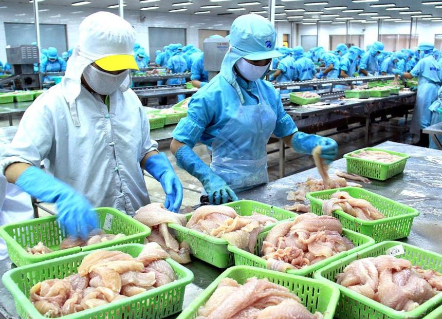 Nguyên chủ tịch Thuỷ sản Việt Nhật (VNH) bị tố chiếm đoạt 155 tỷ đồng